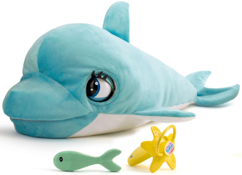 ist ein delfin ein fisch