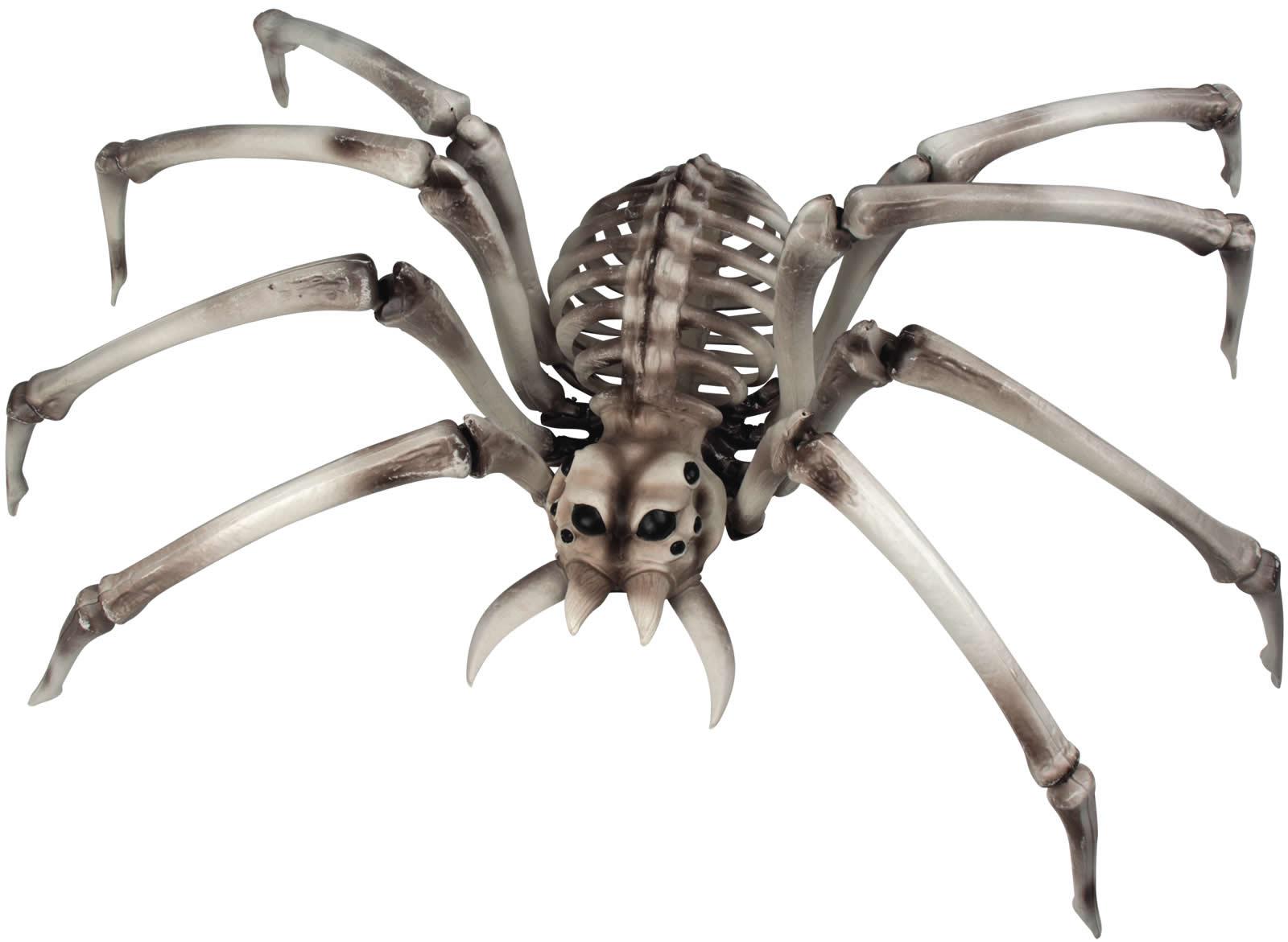 Spinnenskelett Spinne Skelett Horror Grusel Halloween Deko Accessoires 48x82 Cm Ebay